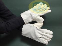 Găng tay vải bạt trắng GV001