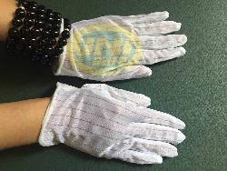Găng tay tĩnh điện PS010